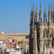 The Dome of The East Face of Burgos Cathedral. Spain — Lizenzfreies Foto