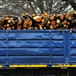 Wooden logs on logging truck trailer - Stock Photo