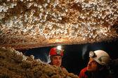 Cave stalactites — Stock Photo