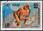 ベトナムのスタンプ — ストック写真
