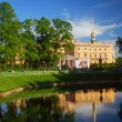 Mikhailovsky castle, view from Summer Garden — Stock Photo #10834105