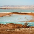 View of Dead Sea Israel coastline - Stock Photo