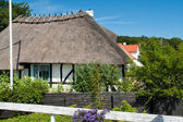 Traditional classic Danish country thached house — Stock Photo