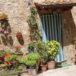 Many flowerpots in front of tuscan house — Stock Photo