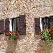Brick wall with windows with shutters and flowers in pots - Stok fotoğraf