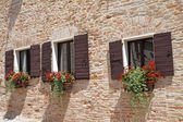 Brick wall with windows with shutters and flowers in pots — Stock Photo