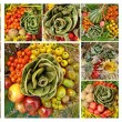 Fall fruit collage - Stock Photo