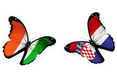 Concept - two butterflies with Irish and Croatian flags flying — Stock Photo