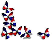 Dominican Republic flag butterflies, isolated on white background — Stock Photo
