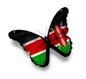 Kenya flag butterfly, isolated on white — Stock Photo