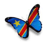 Flag of Democratic Republic of the Congo butterfly, isolated on — Stock Photo