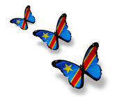 Three Democratic Republic of the Congo flag butterflies, isolate — 图库照片