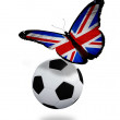 Concept - butterfly with  English flag flying near the ball, lik — Stock Photo