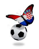 Koncept - motýl s chorvatského vlajku poblíž míč, lik — Stock fotografie
