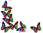 Namibia flag butterflies, isolated on white background — Stock Photo