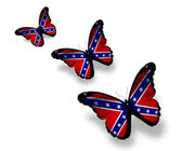 Three Confederate Rebel flag butterflies, isolated on white — Stock Photo