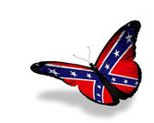 Confederate Rebel flag butterfly flying, isolated on white backg — Stock Photo
