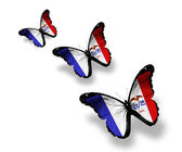 üç iowa kelebekler üzerinde beyaz izole, bayrak — Stok fotoğraf
