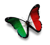 United Mexican States flag butterfly flying, isolated on white b — Stock Photo