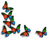 Eritre bayrak kelebekler, beyaz zemin üzerine izole — Stok fotoğraf
