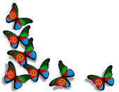 Eritrea flag butterflies, isolated on white background — Stock Photo