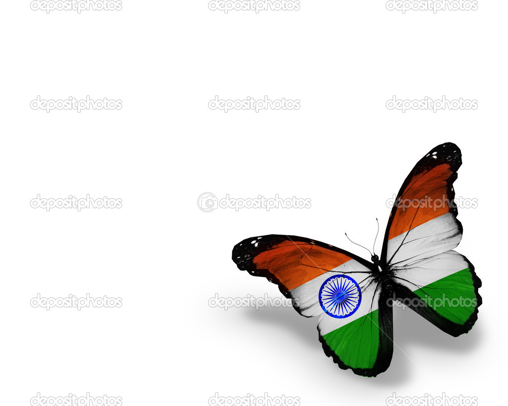 Indian Flag Butterflies: Indian Flag Butterfly, Isolated On White Background