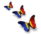Tres mariposas de bandera de moldavia, aisladas en blanco — Foto de Stock