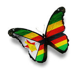 Zimbabwe flag butterfly, isolated on white — Stock Photo