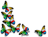 коморские острова флаг бабочки, изолированные на белом фоне — Стоковое фото
