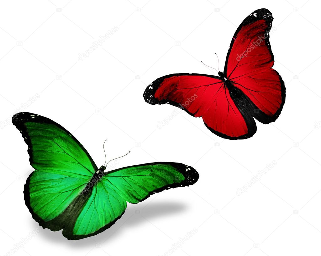 Two red green butterfly, isolated on white — Stock Photo #11884100