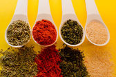 Spices yellow background — Stock Photo