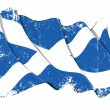 Grange Flag of Scotland — Stock Photo