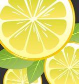 Lemon slices — Zdjęcie stockowe