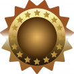 Bronze Medal — Stock Vector #10929005