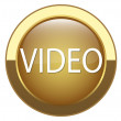 "Internet button labeled ""VIDEO"" — Stock Vector"