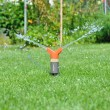 Watering the lawn — Stock Photo #11652954
