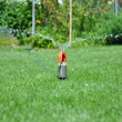 Watering the lawn — Stock Photo #11653077