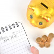 Piggy bank and notepad — Stock Photo #12053534