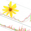 Jerusalem artichoke flower and stock graph - Stock Photo