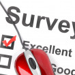 Stock Photo: Survey