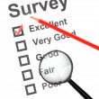Survey - Stockfoto