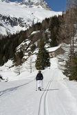 Pista de esquí de fondo — Foto de Stock