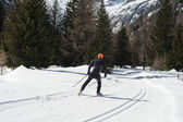 Cross-country skier — Stock Photo