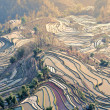 ChinYunnan, Yuanyang terraced color — Stock Photo #10748119