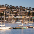 Moored on the River Dart — Stock Photo