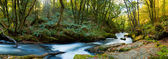 Golitha Falls Cornwall — Stock Photo