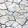 Dry cracked earth in anticipation of rain — Foto Stock