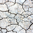Dry cracked earth in anticipation of rain — Stock fotografie