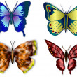 Butterfly — Stock Photo #10817752