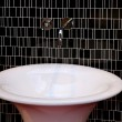 Basin detail — Stock Photo